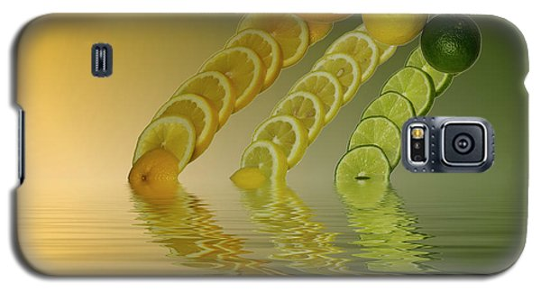 Galaxy S5 Case featuring the photograph Slices  Grapefruit Lemon Lime Citrus Fruit by David French