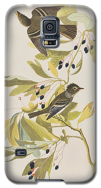 Small Green Crested Flycatcher Galaxy S5 Case