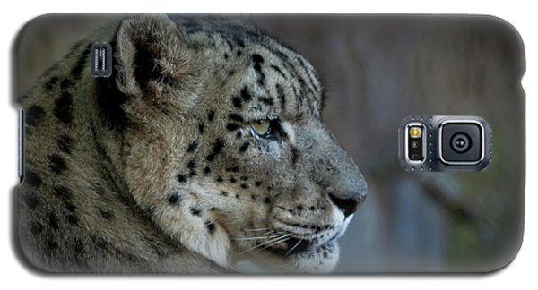 Galaxy S5 Case featuring the photograph Snow Leopard by Roger Mullenhour
