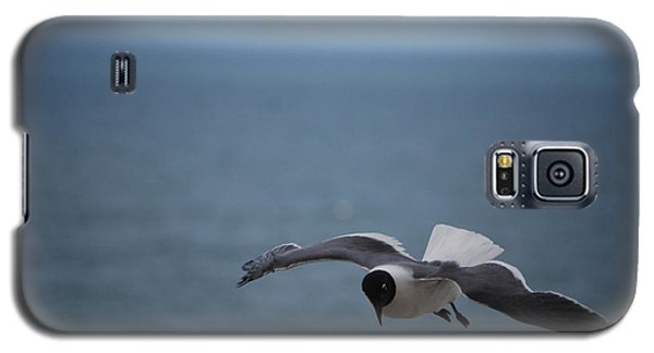 Galaxy S5 Case featuring the photograph Soaring by Debbie Karnes