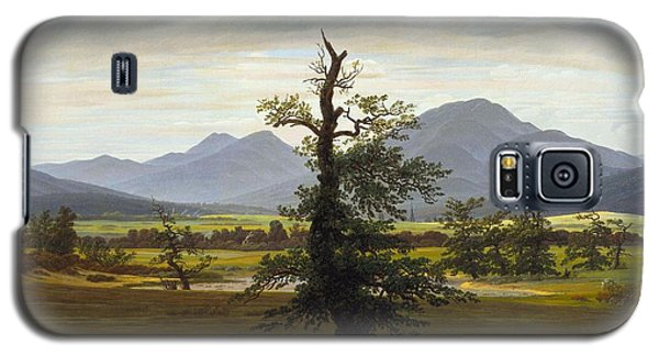 Solitary Tree Galaxy S5 Case