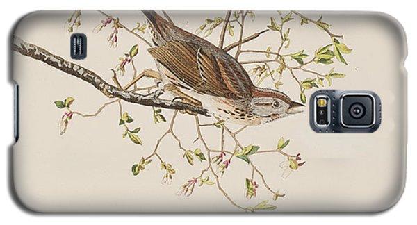 Song Sparrow Galaxy S5 Case by John James Audubon