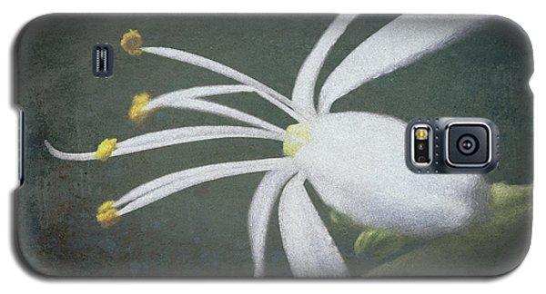 Spider Plant Flower II Galaxy S5 Case