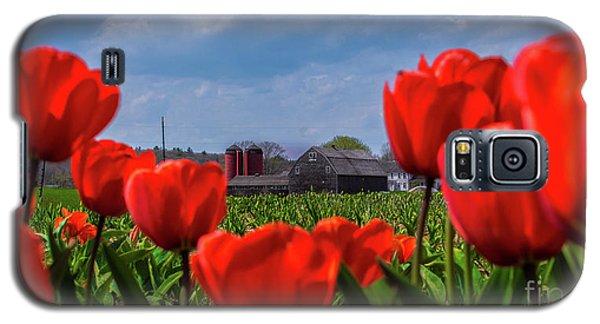 Spring In Rhode Island Galaxy S5 Case