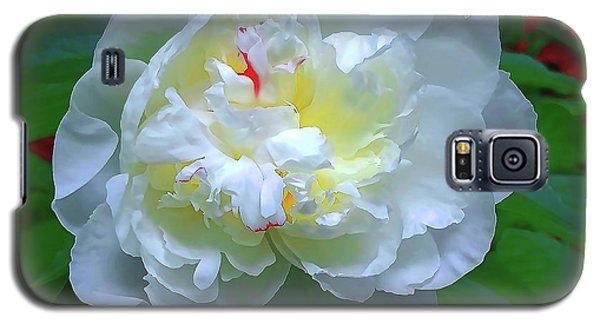 Spring Peony Galaxy S5 Case