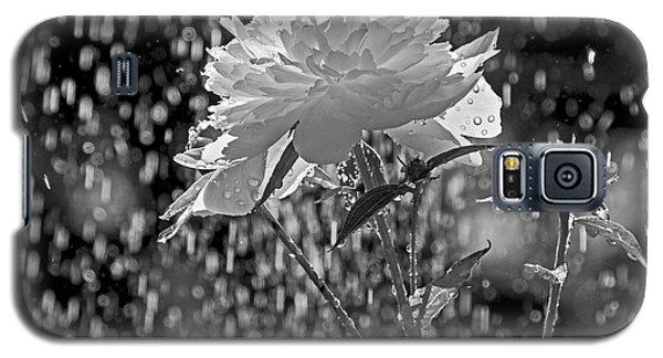 Spring Rain - 365-13 Galaxy S5 Case by Inge Riis McDonald