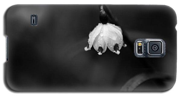 Spring Snowflake Galaxy S5 Case
