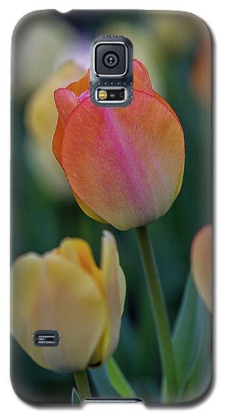 Spring Tulip Galaxy S5 Case