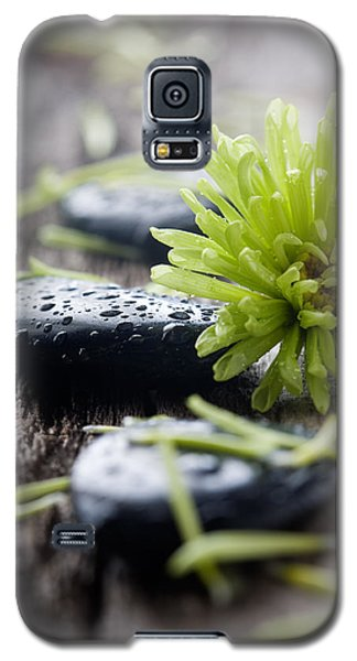 Stones With Water Drops Galaxy S5 Case