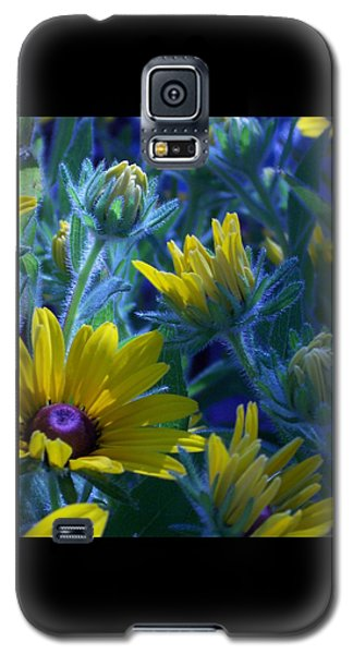 Sun Glory Series Galaxy S5 Case