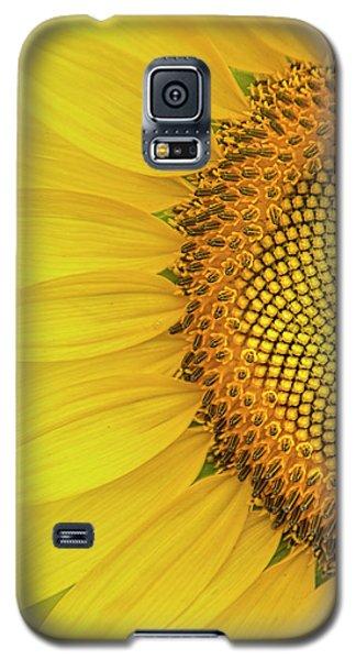 Sunflower Petals Galaxy S5 Case