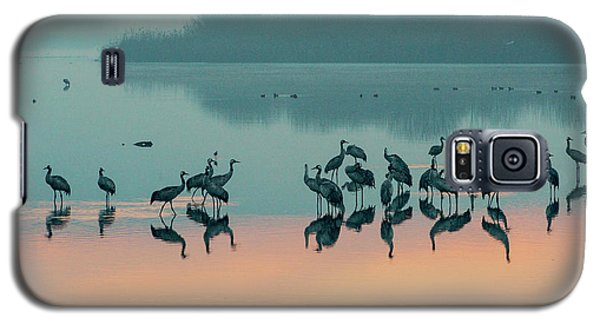 Sunrise Over The Hula Valley Galaxy S5 Case