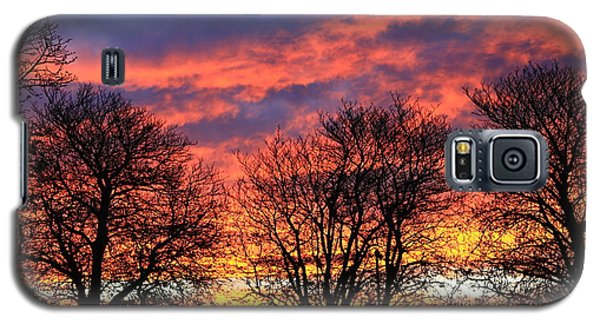 Galaxy S5 Case featuring the photograph Sunset And Filigree by Nareeta Martin