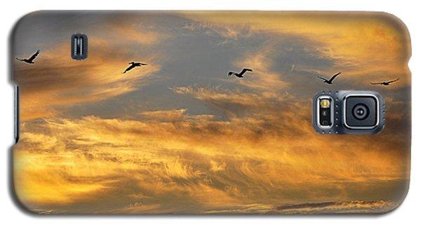Sunset Flight Galaxy S5 Case by AJ Schibig