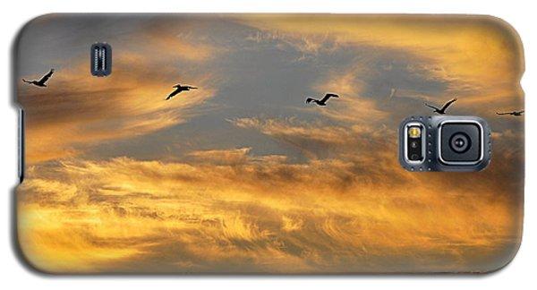 Sunset Flight Galaxy S5 Case