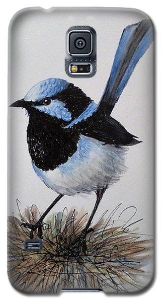 Superb Blue Wren Galaxy S5 Case