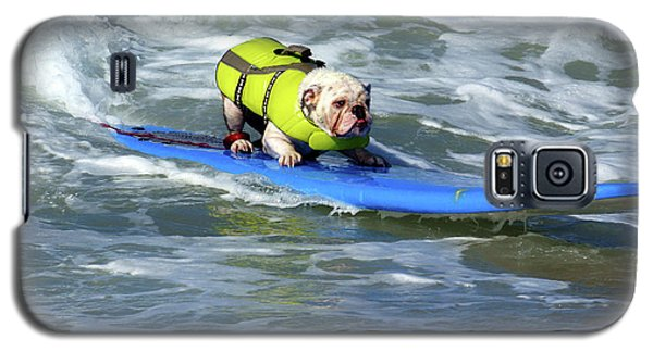 Surfing Dog Galaxy S5 Case by Thanh Thuy Nguyen