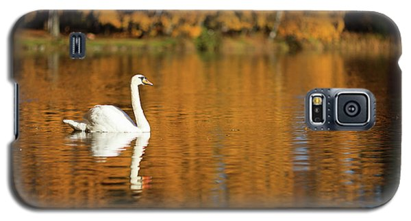 Swan On A Lake Galaxy S5 Case