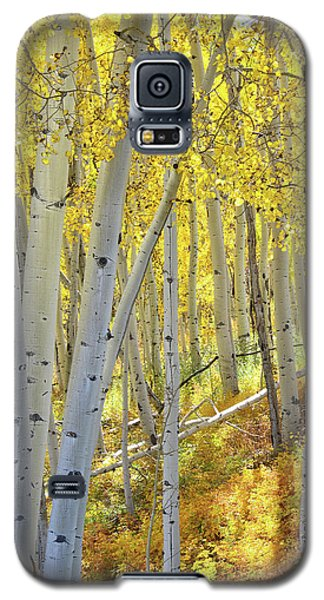 Galaxy S5 Case featuring the photograph Telluride Aspens by Ray Mathis