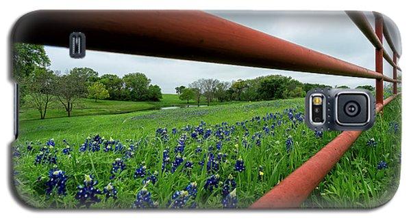 Texas Bluebonnets In Ennis Galaxy S5 Case