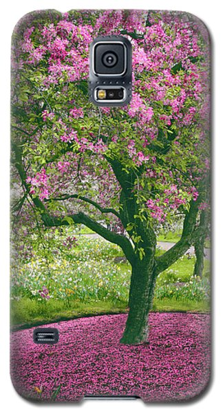 The Apple Doesn't Fall Far From The Tree Galaxy S5 Case by Jessica Jenney