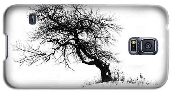 The Apple Tree Galaxy S5 Case