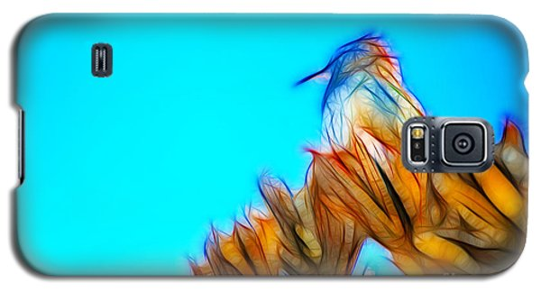 The Cactus Wren Galaxy S5 Case