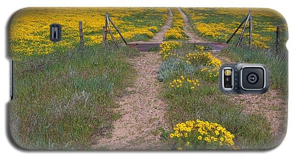 The Golden Gate Galaxy S5 Case by Jim Garrison
