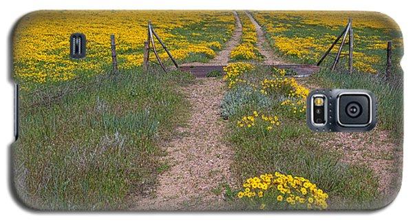 The Golden Gate Galaxy S5 Case