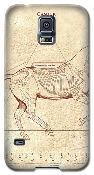 The Horse's Canter Revealed Galaxy S5 Case