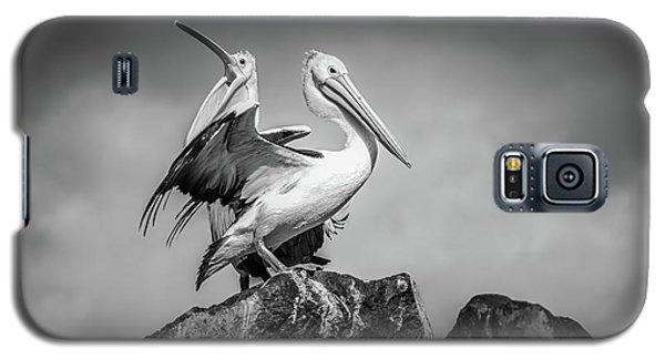 The Pelicans Galaxy S5 Case