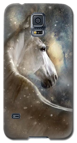 Galaxy S5 Case featuring the digital art The Spirit Of Winter by Dorota Kudyba