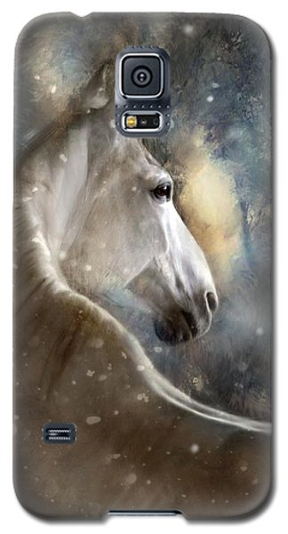 The Spirit Of Winter Galaxy S5 Case by Dorota Kudyba
