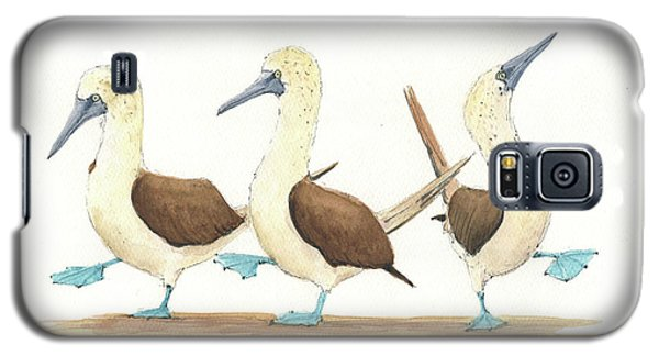 Three Blue Footed Boobies Galaxy S5 Case