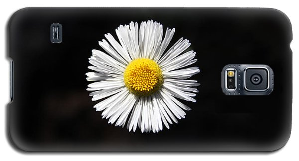 Galaxy S5 Case featuring the photograph Tidy Fleabane by Charles Ables