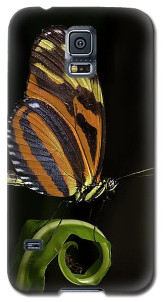 Tiger Longwing Galaxy S5 Case