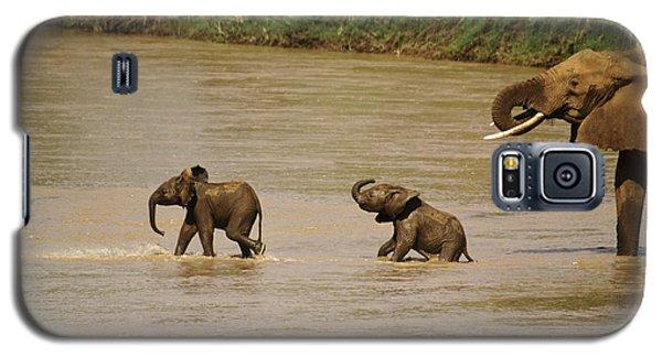 Tiny Elephants Galaxy S5 Case