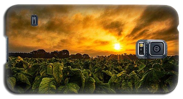 Tobacco Sunrise  Galaxy S5 Case