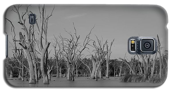 Galaxy S5 Case featuring the photograph Tree Cemetery by Douglas Barnard
