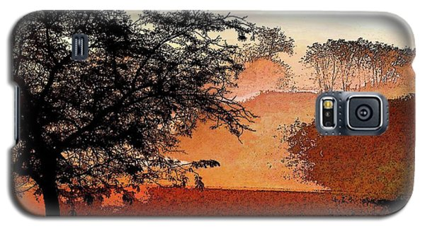 Tree In Morning Light Galaxy S5 Case