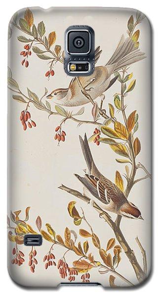 Tree Sparrow Galaxy S5 Case