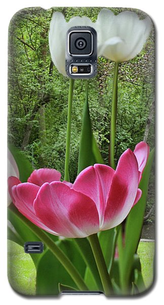 Galaxy S5 Case featuring the photograph Tulips by Bonnie Willis