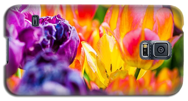 Galaxy S5 Case featuring the photograph Tulips Enchanting 39 by Alexander Senin