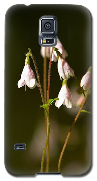 Twinflower Galaxy S5 Case
