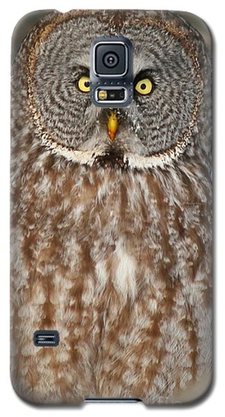 Up Close And Personal Galaxy S5 Case by Heather King