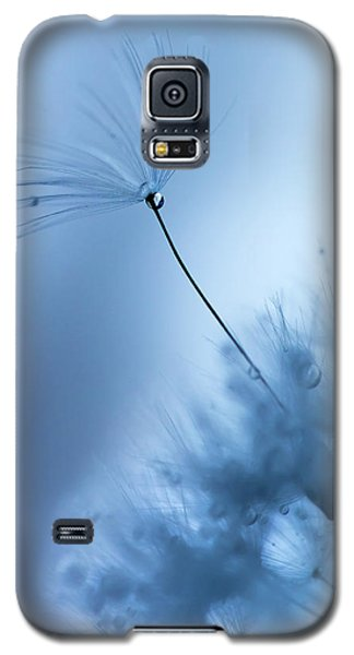 Galaxy S5 Case featuring the photograph Upright by Rebecca Cozart