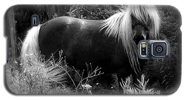 Vanity Galaxy S5 Case by Elfriede Fulda