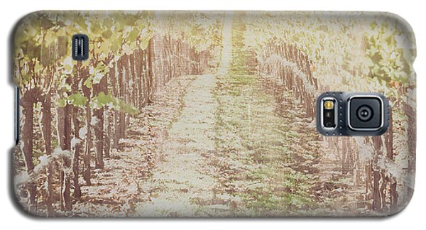 Vineyard In Autumn With Vintage Film Style Filter Galaxy S5 Case