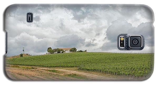 Vineyard In Sardinia Galaxy S5 Case