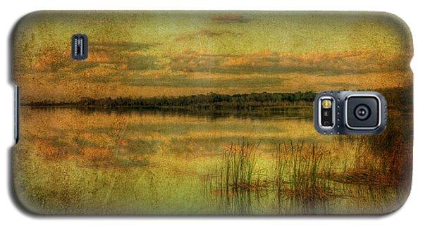 Vintage Florida Galaxy S5 Case